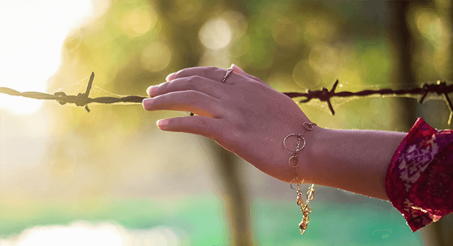 youthful female hand reaching out to barbed wire fence
